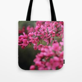 Crap Apple Blossoms Tote Bag