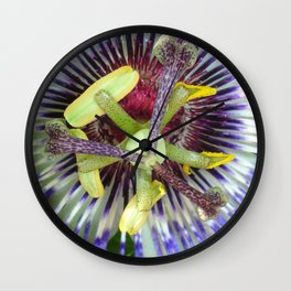 Passion Flower Close Up Wall Clock