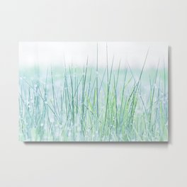 Field of grass in a fresh spring morning Metal Print