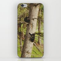 climbing iPhone & iPod Skins featuring Climbing Cubs by Kevin Russ