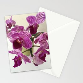 Pink and Sweet Petite Orchids Stationery Cards