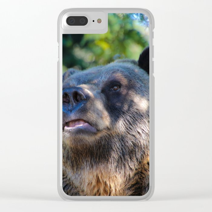 sunny bear Clear iPhone Case