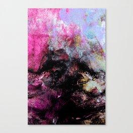 STORMY BLACK vs PINK-1 Canvas Print