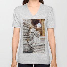 sleeping guardian of the temple Unisex V-Neck