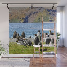 King Penguins and Fur Seals Wall Mural