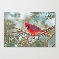 I Spy... (Northern Cardinal) Canvas Print
