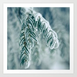Winter Landscape- Covered in Snow Art Print