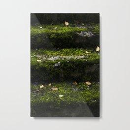Mossy steps Metal Print