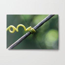 Little Vine Metal Print
