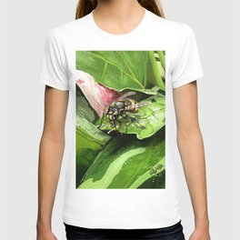 Wasp on flower16 T-shirt