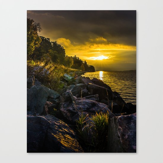 Morning Gold II Canvas Print