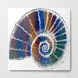 The Nautilus Shell Transparent 2 Metal Print