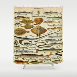 Fish Vintage Scientific Illustration French Language Encyclopedia Lithographs Educational Diagrams Shower Curtain