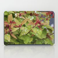 drink iPad Cases featuring Drink by Kim Hawley