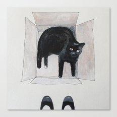 black cat box Canvas Print
