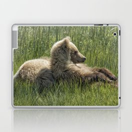 Settling Down Again - Bear Cubs, No. 6 Laptop & iPad Skin