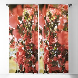 Southern Style Blackout Curtain