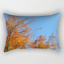 Golden Heavens #5 Rectangular Pillow
