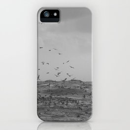 A perfect storm - Hampton Style iPhone Case