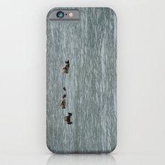 USA - ALASKA - Three otters iPhone 6s Slim Case