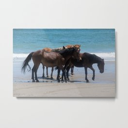 Wild Spanish Mustangs Metal Print