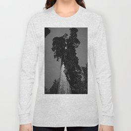 Sequoia National Park VIII Long Sleeve T-shirt