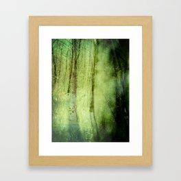 Peering through the shadows ~ Winter forest Framed Art Print