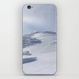 The Top iPhone Skin