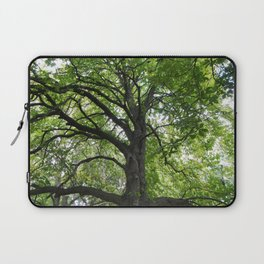 Reaching Branches Laptop Sleeve