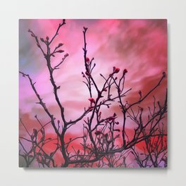 Dark Branches Red Buds And Fiery Sky Metal Print