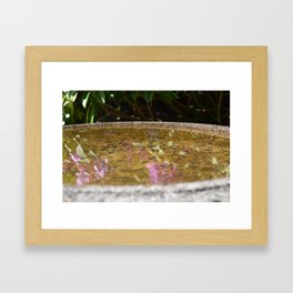 Bird Bath Reflection  Framed Art Print