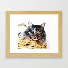 Don't laught at me! Framed Art Print