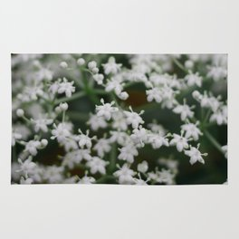Small little white flowers Rug