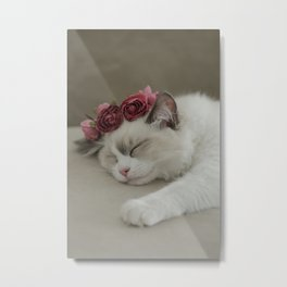 SLEEPY KITTY by Monika Strigel Metal Print