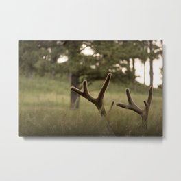 I can't see you so you can't see me Metal Print