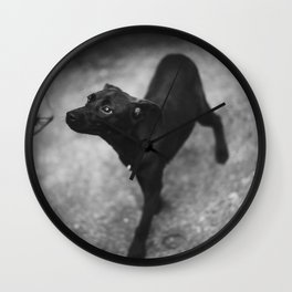 sniff Wall Clock