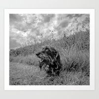 DACKEL DOG #28 Art Print