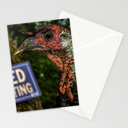 Wild Turkey Hunting Stationery Cards