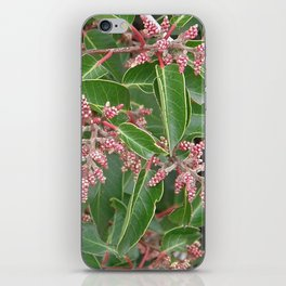TEXTURES - Manzanita in Drought #1 iPhone Skin
