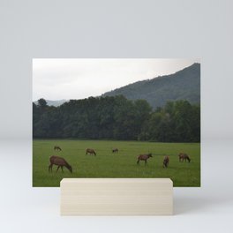 Elk in the Smokies Mini Art Print