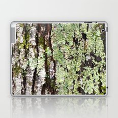 Tree Bark Lichen Laptop & iPad Skin
