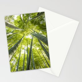 Bamboo forest in Japan Stationery Cards
