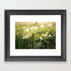 flower Margarita Framed Art Print