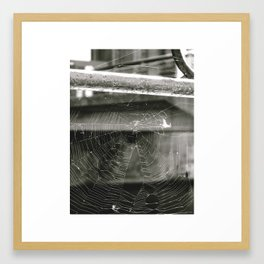 Pergamon Framed Art Print