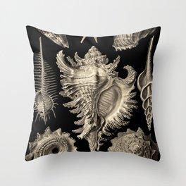 Ernst Haeckel Prosobranchia Sea Shells Throw Pillow