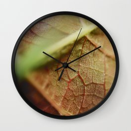 Nature's Pattern II Wall Clock