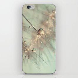 dandelion mint iPhone Skin
