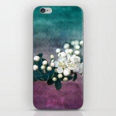 GARDEN TREASURY iPhone & iPod Skin