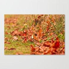 Autumn time Canvas Print