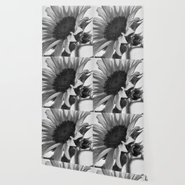 Sunflower Black & White Wallpaper